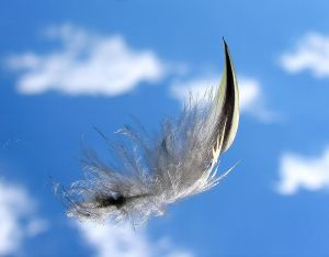 feather falling